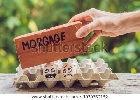 Család pár űrlap kettő tojások probléma Stock fotó © galitskaya