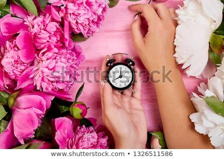 Stockfoto: Bloemist · werk · handen · vrouw · houden · wekker