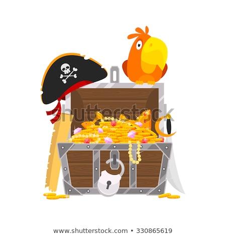 пиратских · Parrot · вектора · clipart · иллюстрация - Сток-фото © liolle
