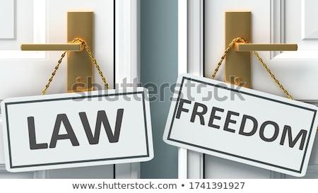 Ley palabra ilustración 3D prestados fondo Foto stock © Spectral