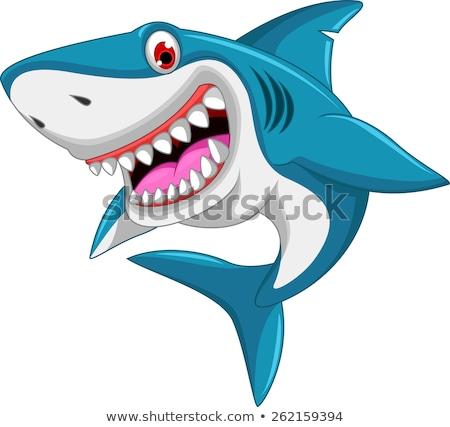 カラフル 漫画 サメ 孤立した 白 ビーチ ストックフォト © cidepix