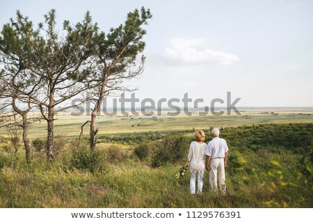 Back view of active senior couple holding hands standing at the beach with mountains in the backgrou Stock photo © wavebreak_media