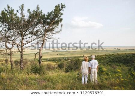 arkadan · görünüm · romantik · mutlu · ayakta · plaj - stok fotoğraf © wavebreak_media
