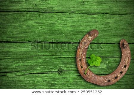horseshoe with shamrock on green wood boards Stock photo © dolgachov