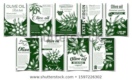 Olives originale organique produit affiche vecteur Photo stock © pikepicture