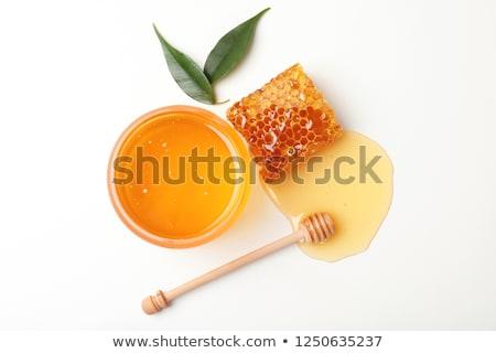 Miele legno sfondo drop bianco cucchiaio Foto d'archivio © limpido