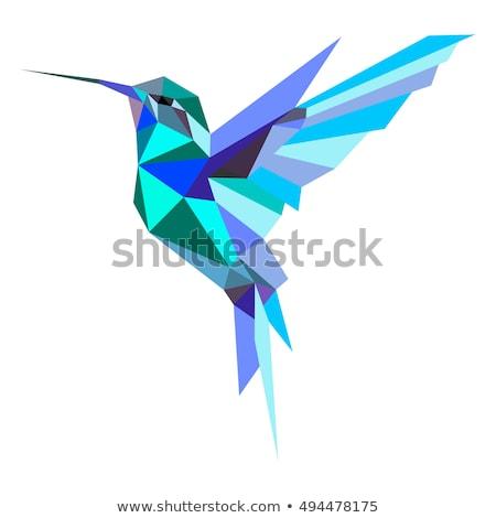 Vliegen zwarte contour kolibrie witte Stockfoto © blackmoon979