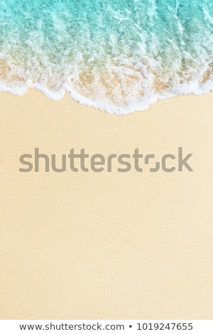Wave on the shore. Foam and sand texture Stock photo © cienpies