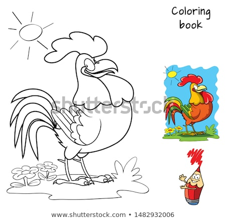 Chicken to be colored, the coloring book for preschool kids Stock photo © natali_brill