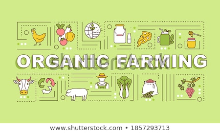 Duurzaam landbouw banner smart eco Stockfoto © RAStudio