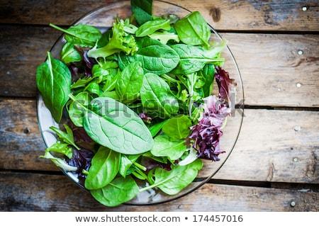 Stockfoto: Vers · gemengd · salade · kaas · geserveerd