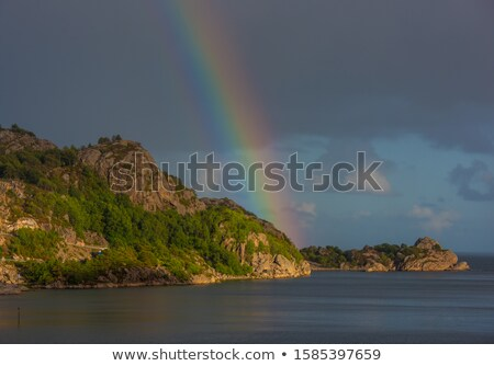 intense rainbow above forest Stock photo © Arrxxx