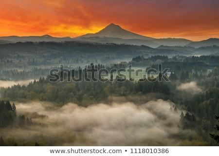 ストックフォト: Foggy Sunrise Over Sandy River And Mount Hood