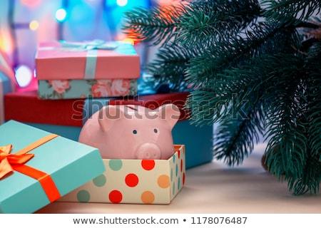 Karácsony dekoráció persely otthoni pénzügyek Stock fotó © devon