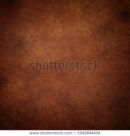 Grunge rosolare primo piano abstract carta marrone texture Foto d'archivio © homydesign