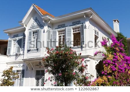 島 イスタンブール 美しい 表示 海 南 ストックフォト © HypnoCreative