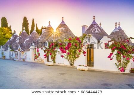Trulli houses in Alberobello, Italy Stock photo © aladin66