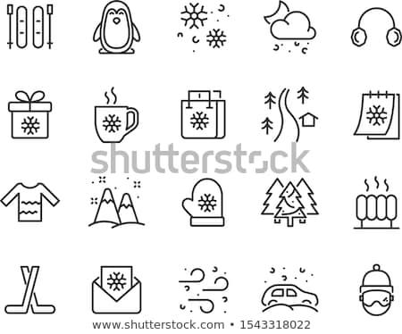 Snowflake Winter Icon Stock photo © make