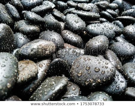 Rock and rain stock photo © ajfilgud