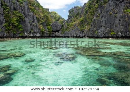 Small lagoon entrance Stock photo © smithore