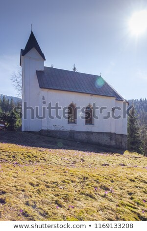 Kerk Slowakije gebouw architectuur Europa geschiedenis Stockfoto © phbcz