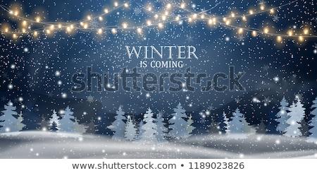 Kış gece ışıklar ay Noel orman Stok fotoğraf © Mps197