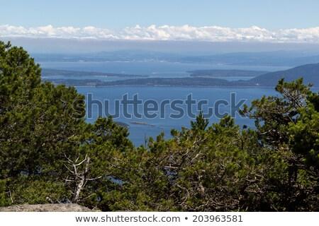 ストックフォト: 高い · 表示 · ポイント · サンファン · 島々 · 夏場
