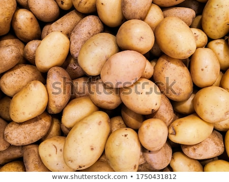 Ruw aardappel voedsel mes witte kok Stockfoto © yelenayemchuk