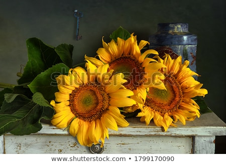 girassóis · vaso · buquê · amarelo · metal · flores - foto stock © tannjuska
