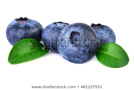 Studio shot fresh blueberries with leaves isolated white Stock photo © dla4