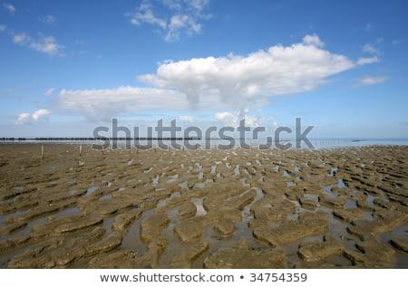 boue · faible · marée · vieux · clôture - photo stock © peter_zijlstra