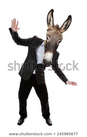 男 ロバ 自然 背景 フィールド 緑 ストックフォト © OleksandrO