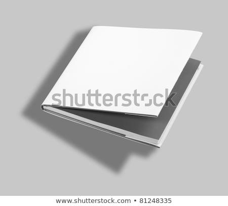 Kitap beyaz kapak ofis Stok fotoğraf © hanusst