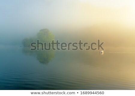 Su göller bölgesi gökyüzü manzara ağaçlar göl Stok fotoğraf © lucielang