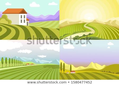 manhã · paisagem · montanha · aldeia · nebuloso · montanhas - foto stock © Kotenko