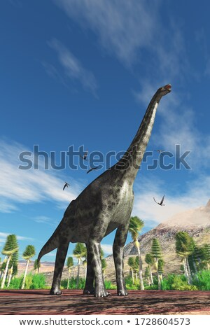 Dorygnathus in flight Stock photo © AlienCat