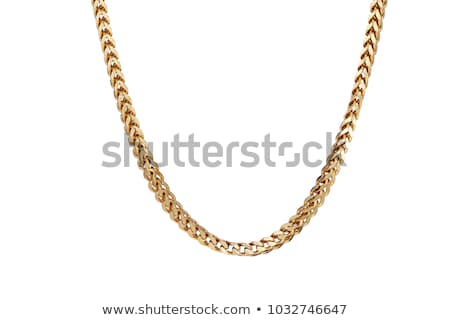Man with chain isolated on white Stock photo © Elnur