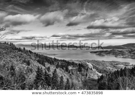Plastiras lake in central Greece - black and white Stock photo © ankarb