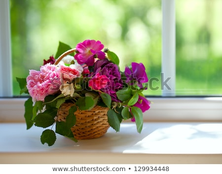 Different flower on a window sill  Stock photo © IMaster
