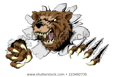 Bear Angry Mascot Background Claws Breakthrough Stock photo © Krisdog