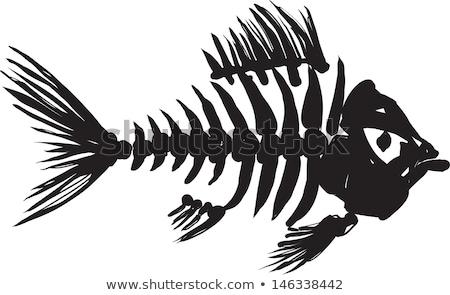 primitive fish skeleton Stock photo © sharpner