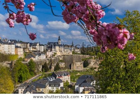 Panorama Luksemburg miasta charakter panoramę jesienią Zdjęcia stock © benkrut