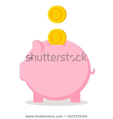 piggy bank icon golden bitcoin coin virtual money cryptocurrency and saving concept vector illust stock photo © ikopylov