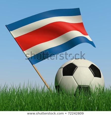 Football in costa rica colours against green background Stock photo © wavebreak_media