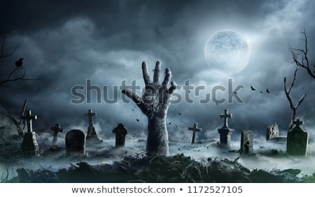 A zombie at the graveyard Stock photo © bluering