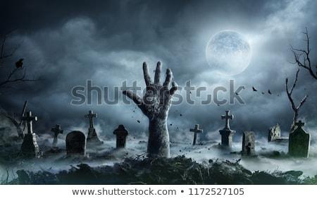 halloween · ijesztő · kidőlt · fa · temető · illusztráció · ijesztő - stock fotó © bluering