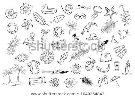 Diving flippers hand drawn outline doodle icon. Stock photo © RAStudio