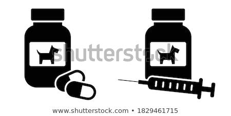 Veteriner klinik hapları ilaçlar şişeler vektör Stok fotoğraf © robuart