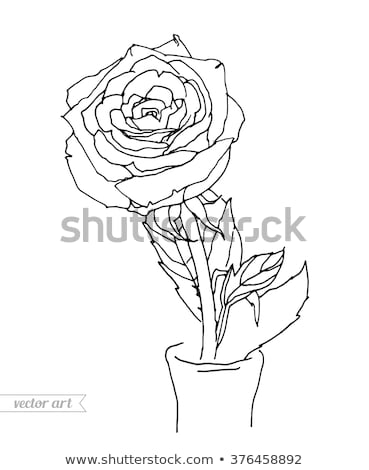 Fresh amazing flowers bouquet in a woman's hands with tattoo on a white background. Greeting card. Stock photo © artjazz