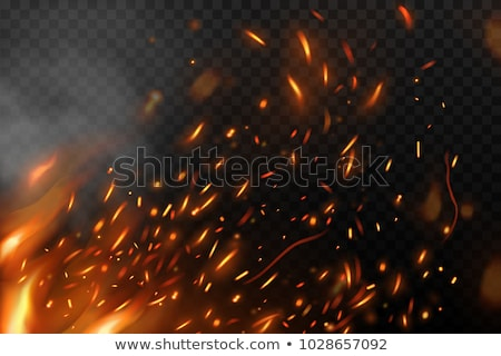 Realistic Campfire Flame With Sparks Effect Vector 商業照片 © pikepicture